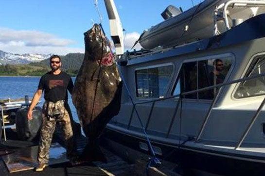 Photos: 405-Pound Halibut Caught in Alaska