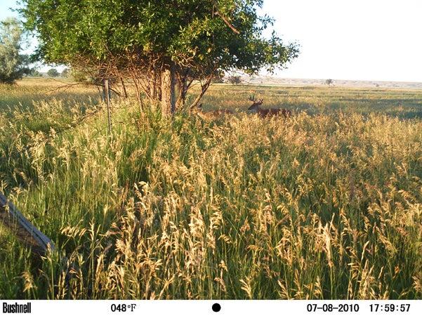 httpswww.outdoorlife.comsitesoutdoorlife.comfilesimport2013images201007RQ15_0.jpg