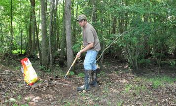 Deer Hunting: The Food Plot Deadline is Approaching