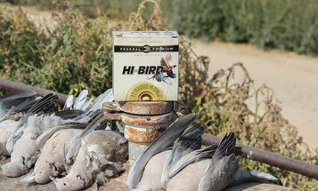 The 11 Best Hunts of Summer