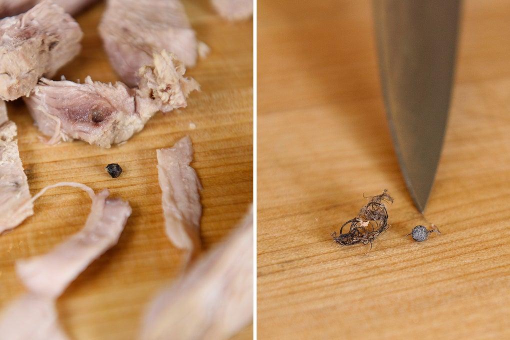 shot pellet still in turkey meat