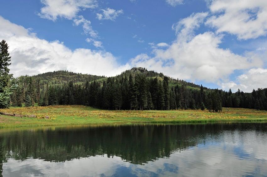httpswww.outdoorlife.comsitesoutdoorlife.comfilesimport2014importImage2010photo6NMGSlamJA-B-6.jpg