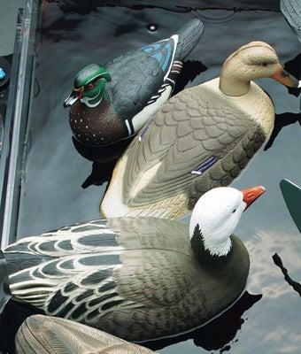 httpswww.outdoorlife.comsitesoutdoorlife.comfilesimport2014importImage2008legacyoutdoorlife125-Nov08_ForTheBirds_DuckMallardGoose.jpg