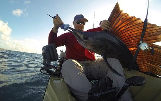 DIY Big-Game Fishing: How to Catch Sailfish on a Budget