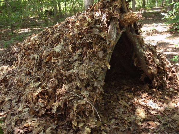 Survival Skills: How to Build a Leaf Hut Shelter