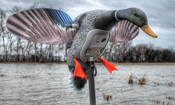 Hottest Bird Hunting Gear at SHOT Show 2017