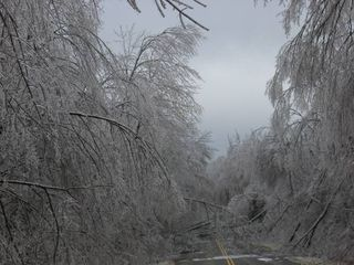 httpswww.outdoorlife.comsitesoutdoorlife.comfilesimport2014importImage2011photo6Mass_ice_storm.jpg
