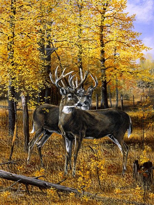 httpswww.outdoorlife.comsitesoutdoorlife.comfilesimport2014importImage2008legacyoutdoorlifedenault_paintings_AutumnRendezvous.jpg
