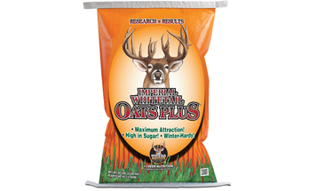 Fall Food Plots: What to Plant in Dry Weather