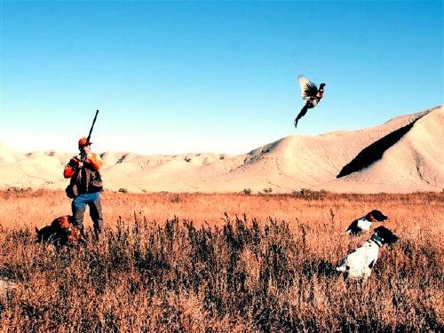 httpswww.outdoorlife.comsitesoutdoorlife.comfilesimport2014importImage2009photo73._Idaho.jpg