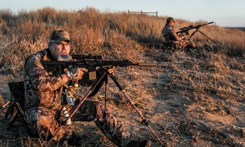 Top Dogs: A Look at the Best Coyote-Calling Duo of All Time