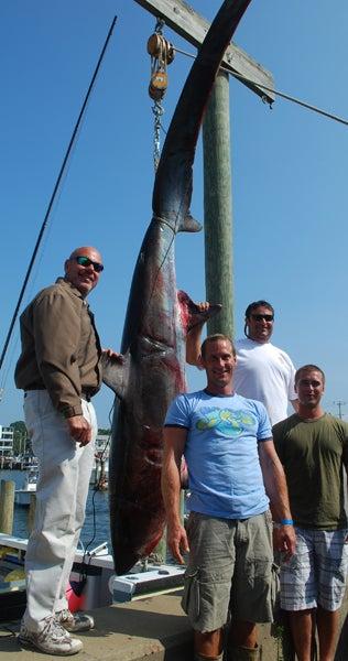 The Monster Shark Tournament