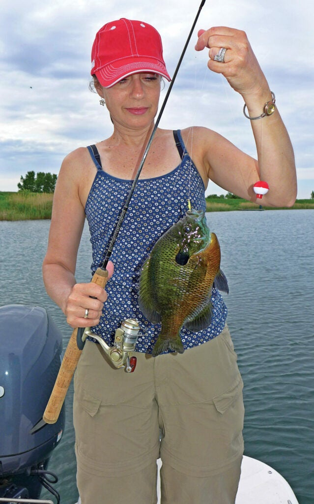 fishing for big bluegills
