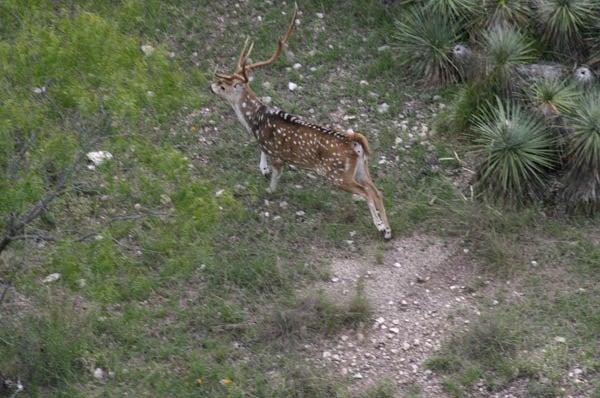httpswww.outdoorlife.comsitesoutdoorlife.comfilesimport2014importImage2010photo30010FordRanch_078.jpg