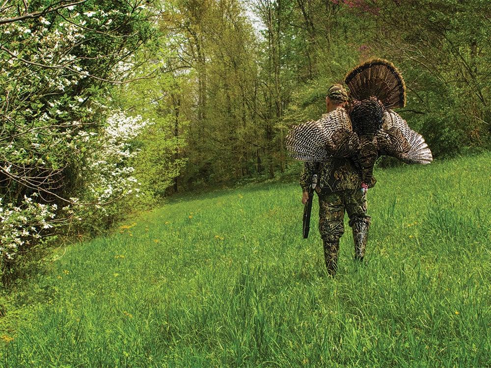 Turkey hunting in woods