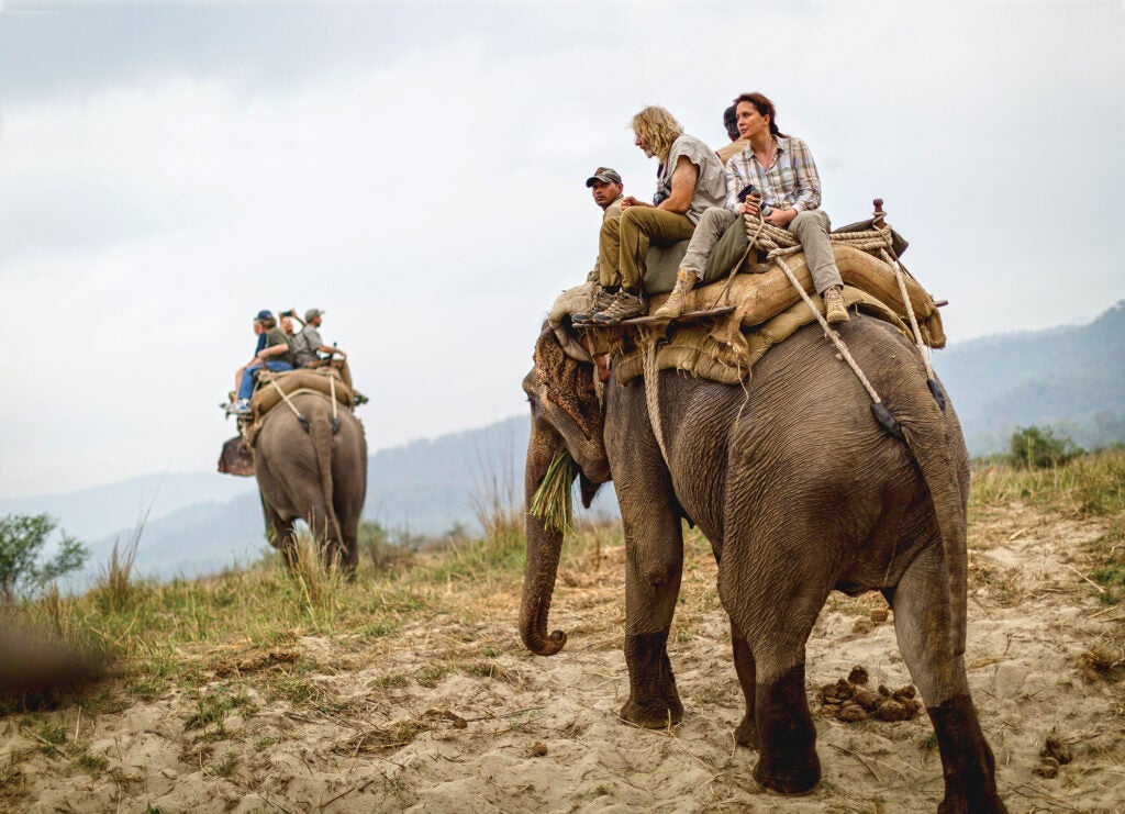 hunting India