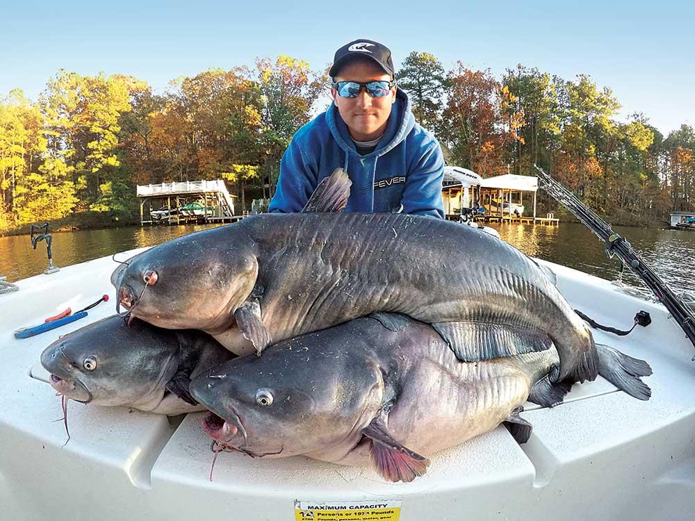 planer-caught catfish