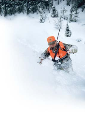 Swept Away Avalanche Survival