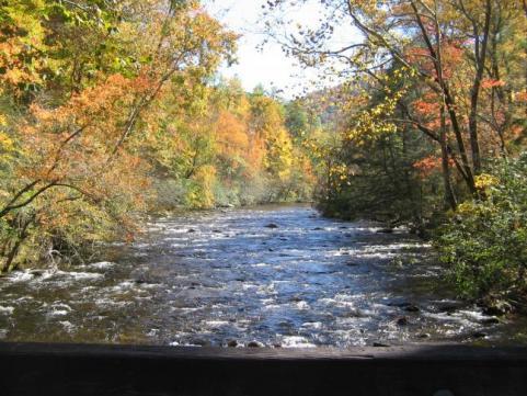 httpswww.outdoorlife.comsitesoutdoorlife.comfilesimport2014importImage2009photo7Decfoliage_58.jpeg