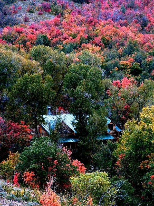 httpswww.outdoorlife.comsitesoutdoorlife.comfilesimport2013images201101Photo_6_1.jpg