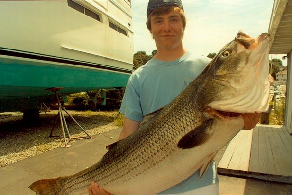 httpswww.outdoorlife.comsitesoutdoorlife.comfilesimport2014importImage2010photo10013215796_striped_bass_-_36227.jpg