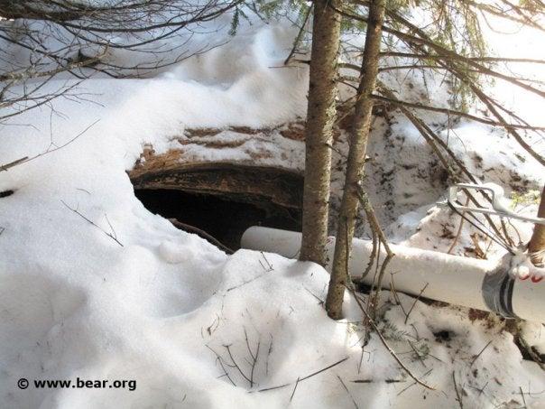 httpswww.outdoorlife.comsitesoutdoorlife.comfilesimport2014importImage2010photo6lilly3.jpg
