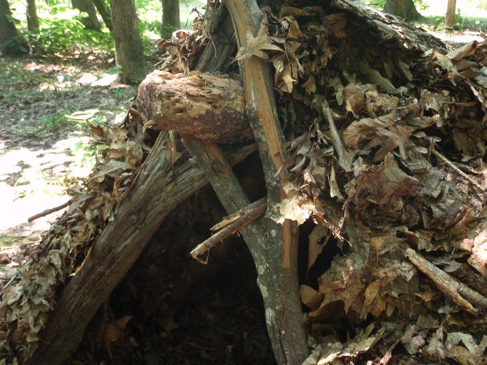 httpswww.outdoorlife.comsitesoutdoorlife.comfilesimport2013images2011074_2.JPG