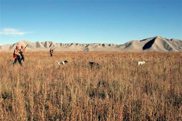 httpswww.outdoorlife.comsitesoutdoorlife.comfilesimport2014importImage2009photo711._Montana.jpg