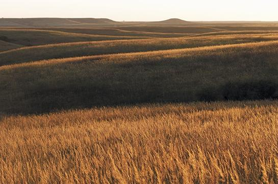 Public Land: Hunting and Fishing in Kansas