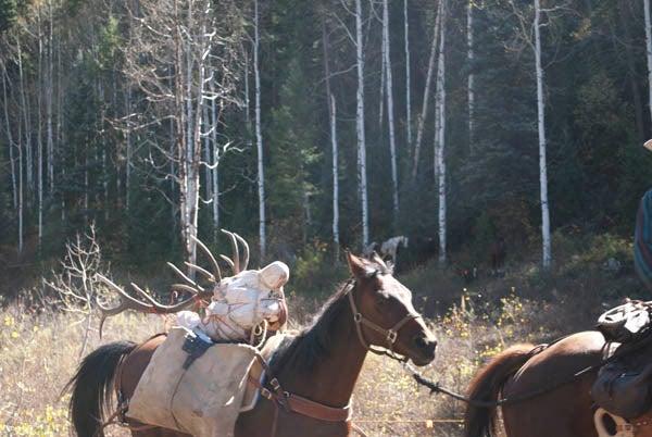 httpswww.outdoorlife.comsitesoutdoorlife.comfilesimport2014importImage2010photo6DSC_0293.jpg