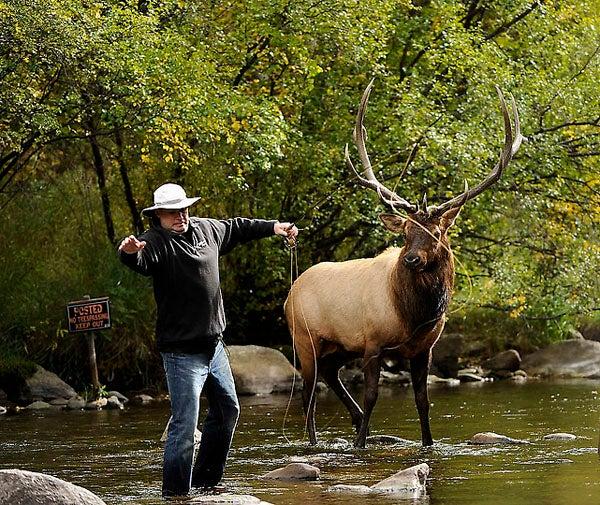 httpswww.outdoorlife.comsitesoutdoorlife.comfilesimport2013images201111elkfishing_05_0.jpg