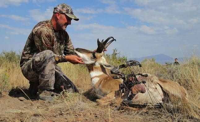 Trophy antelope Hart Mountain Antelope Refuge