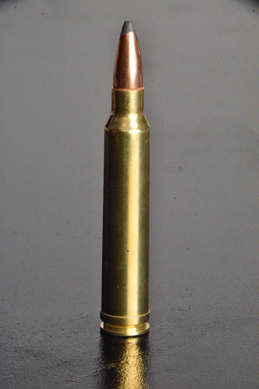 300 winchester rifle ammunition whitetail