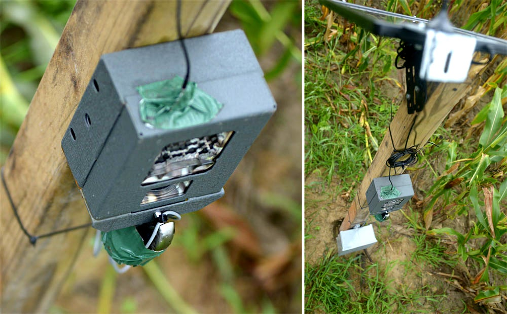 Reconyx Cellular HyperFire: The Ultimate Trail Camera System