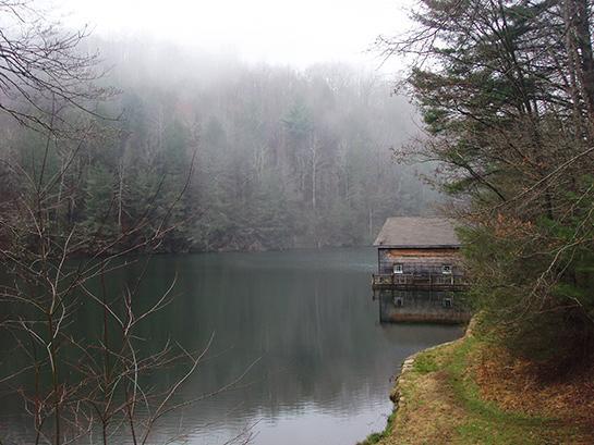 Public Land: Hunting and Fishing in North Carolina