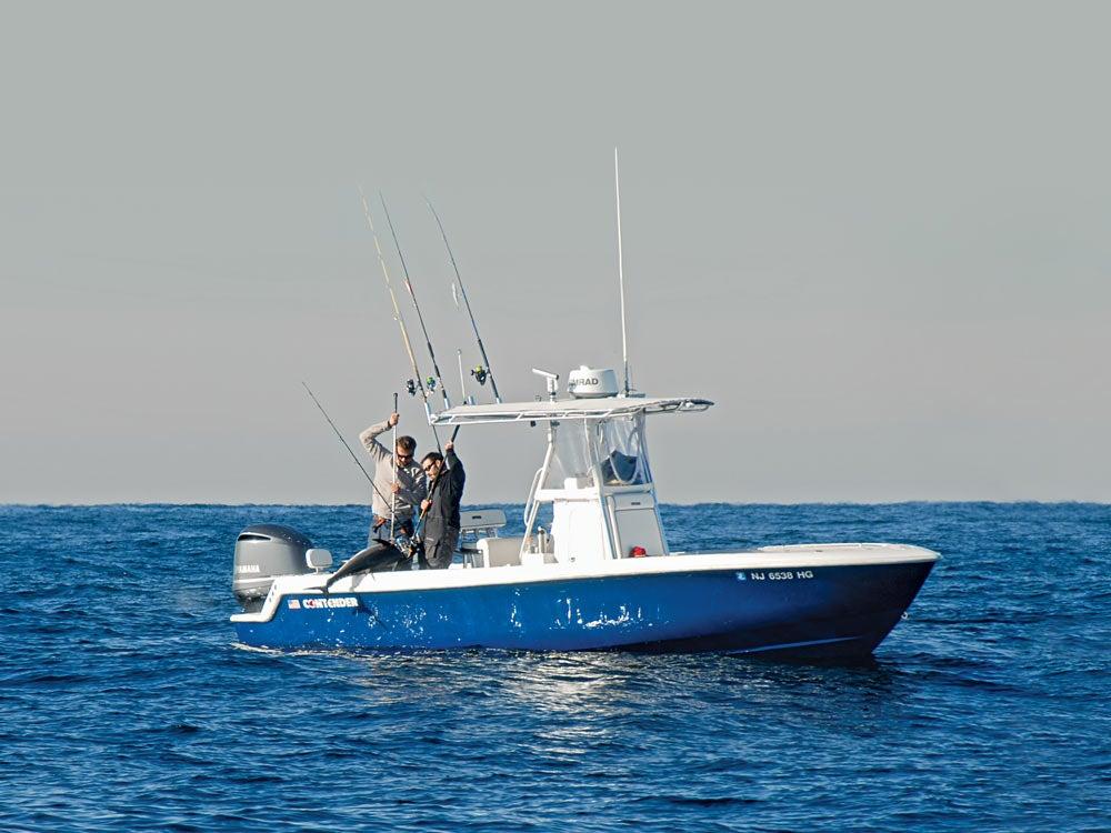 christmas bluefin fishing