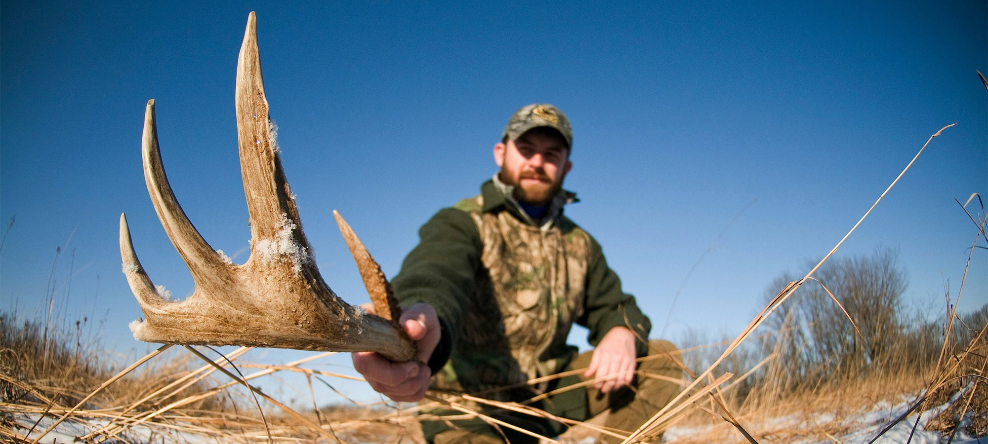 rules to hunting shed antlers