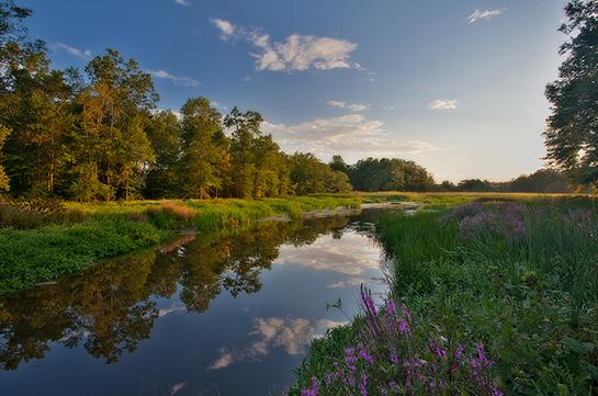 Public Land: Hunting and Fishing in New Jersey