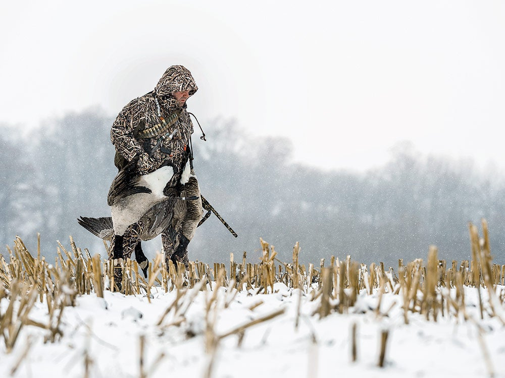 A hunter hauls a full load of geese.