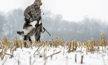3 Sleeper States for the Traveling Goose Hunter