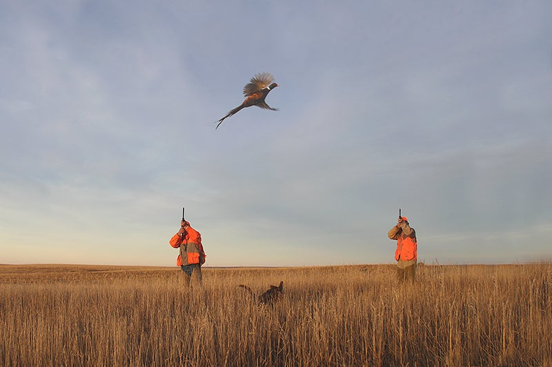 Cast and Blast: Pheasant Hunting and Walleye Fishing in South Dakota
