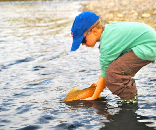 httpswww.outdoorlife.comsitesoutdoorlife.comfilesimport2013images201101slide31_2.jpg