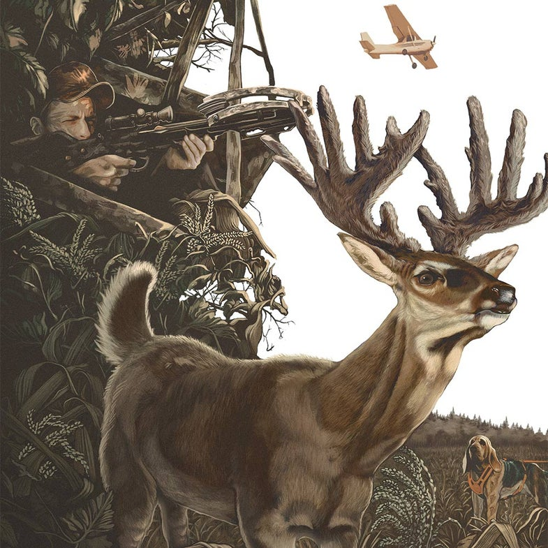 illustration of a buck and crossbow hunter
