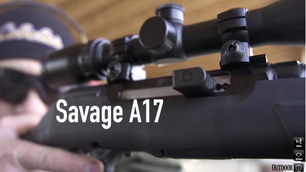 Gun Lab: Savage A17 Review