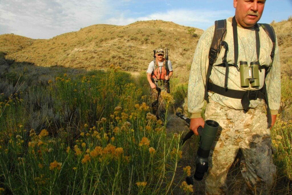httpswww.outdoorlife.comsitesoutdoorlife.comfilesimport2014importImage2009photo7sheep12.JPG