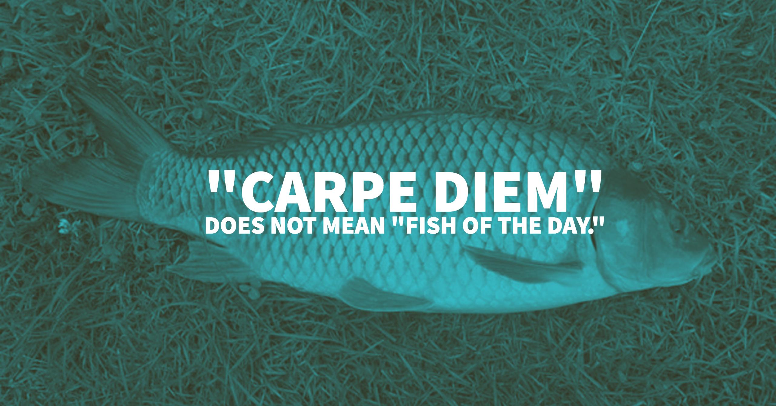 49 of the Best Fishing Quotes of All Time