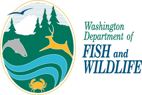 Game Warden Bust Ends in Shootout