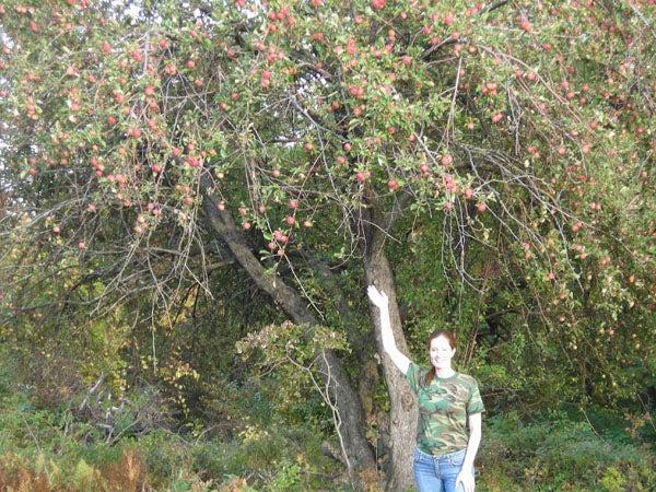 httpswww.outdoorlife.comsitesoutdoorlife.comfilesimport2014importImage2009photo7DSCN0500.JPG