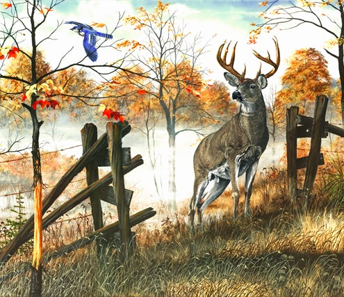 httpswww.outdoorlife.comsitesoutdoorlife.comfilesimport2014importImage2008legacyoutdoorlifedenault_paintings_TheSentinel.jpg