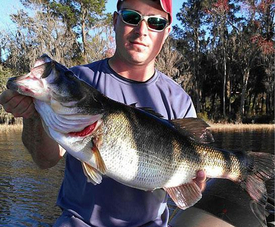 Spring Fishing: Florida Angler Catches Trio of Monster Bass
